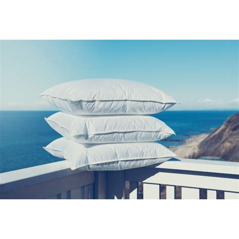 Fossfill Pillows by Fossflakes Pillow Firm 850gm