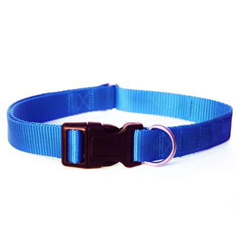 Blues Collar magnetic collar blue equine magnetix
