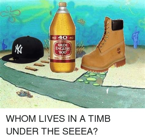 Timb Memes - to 4o english malt whom lives in a timb under the seeea live meme on sizzle