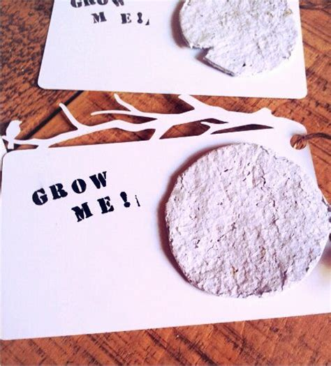 How To Make Plantable Seed Paper - 1000 images about seed paper diy decoration ideas on