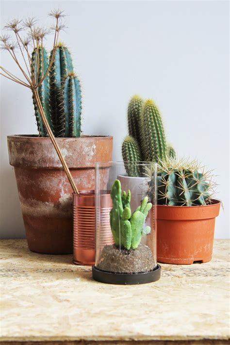 desk cactus boomandyoyo cactus leenbakker desk workingplace green