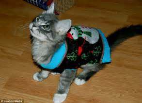 It s not just humans that get embarrassing jumpers for christmas dogs