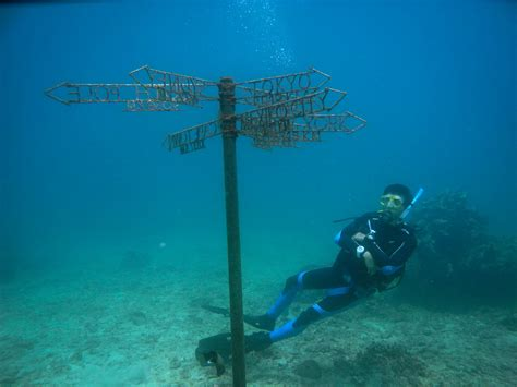 Bali Diving Package diving courses trips packages in bali absolute scuba