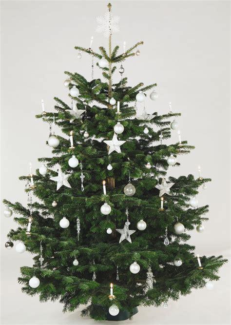 top 28 weihnachtsbaum bedeutung weihnachtsbaum