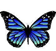 im genes de piolin para imprimir gifs y fondos la chachipedia mariposas para colorear para imprimir y