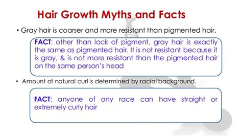 sectionalism facts all about hair ppt