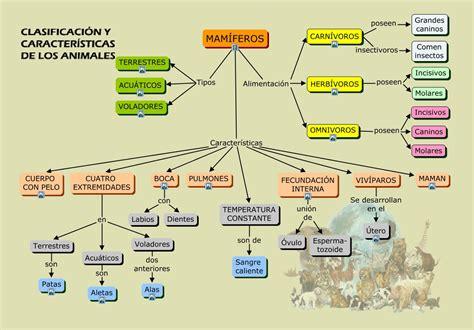 animales vertebrados mamiferos caracteristicas portal mamiferos