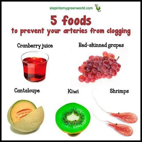 Artery Detox by Arteries Cleansing Fitness The Healthy Stuffff