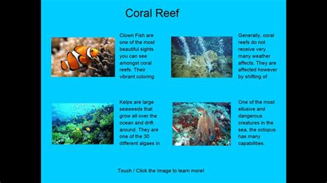 Free App To Design Your Own Home by Four Coral Reef Ecosystem Facts For Windows 8 And 8 1