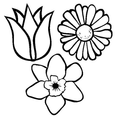 free coloring pictures of spring flowers spring flowers coloring pages coloring pages