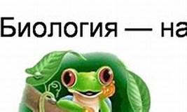 Image result for Незнайка ЕГЭ БИОЛОГИЯ. Size: 267 x 88. Source: vk.com