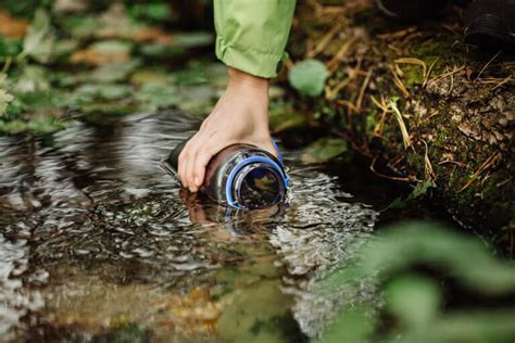 how to find filter purify distill water in the wild