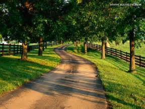 can this please be my country driveway home pinterest