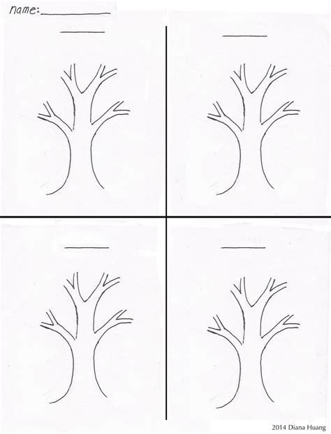drawing template four seasons tree drawing template worksheet by diana