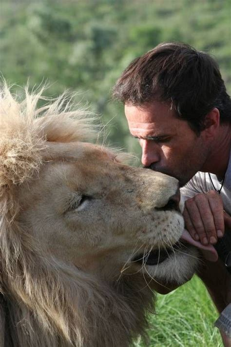 animal lover kevin richardson serenades  pound lionesses  love animals beautiful