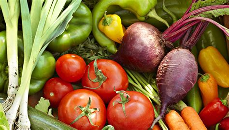 gardening when to plant vegetables how to start a vegetable garden hirerush