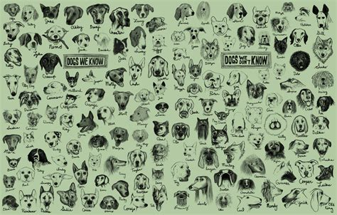 disney names for dogs dogs stories at techdirt