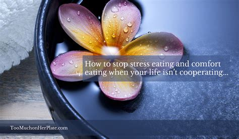 how to stop comfort eating how to stop stress eating and comfort eating