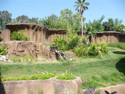 La Zoo Botanical Gardens Los Angeles Zoo Co Gorilla Reserve 187 Los Angeles Zoo Botanical Gardens Gallery