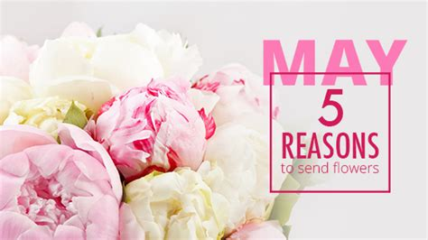 Reasons To Send Flowers by 5 Reasons To Send 16 May Flowers