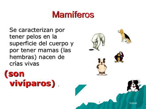 imagenes animales oviparos y viviparos animales ov 237 paros y viv 237 paros