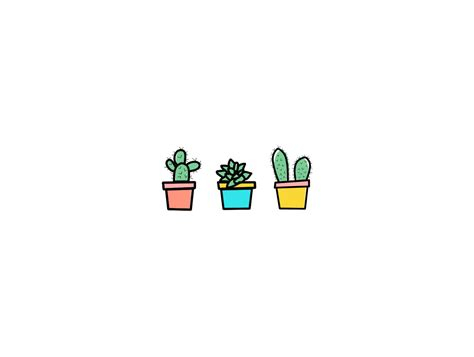 Cute Flower Pots by Succulent Wallpapers And Pictures Collection 46