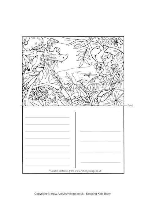 coloring book postcards rainforest postcard