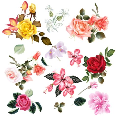 Flower Vector realistic vector flowers set 02 free