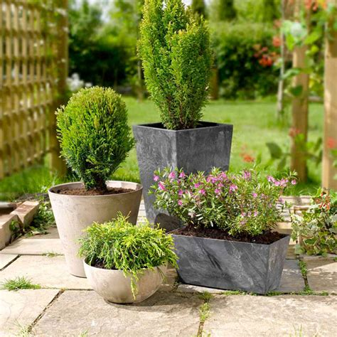 Patio Pots With Plants Black Planter X2 Dobies