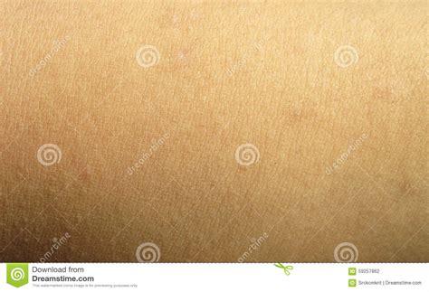 human skin texture stock photo image 76786839 human skin background stock photo image 59257862