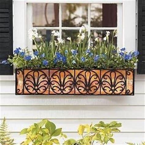fiori per vasi da balcone fioriere da balcone vasi e fioriere