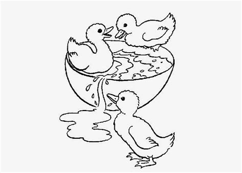 Baby Ducks Coloring Pages To Print Free Coloring Pages Baby Duck Coloring Page