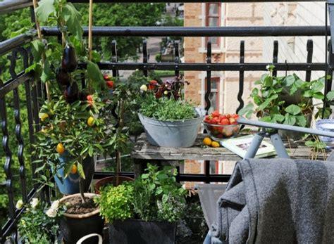 garten balkon coole ideen f 252 r balkon pflanzen einen garten auf balkon