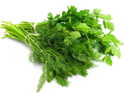 chinese celery substitute