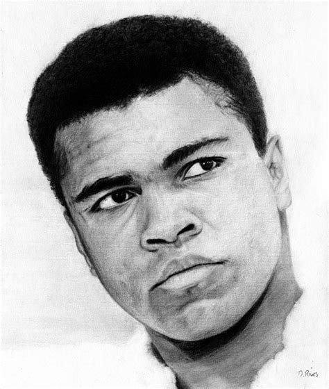 Pensil Alis Drawing muhammad ali pencil drawing drawing by david rives