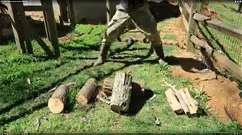 How To Keep Mosquitoes Away In Backyard New Trick Promises To Make Splitting Firewood Easier