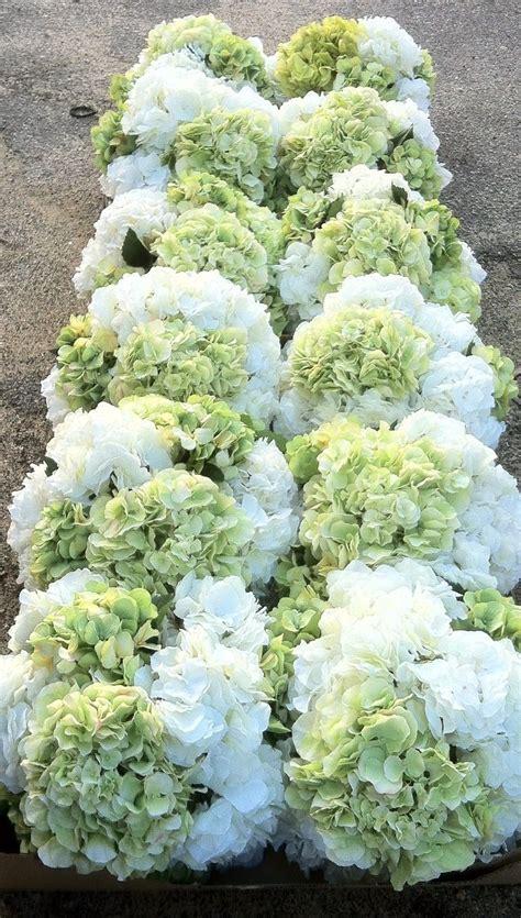 stunning white  cream  green hydrangea centerpiece