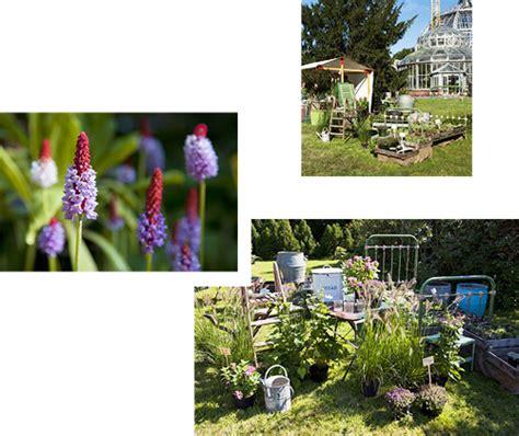 Botanischer Garten Berlin Pflanzen Kaufen by Pflanzzeit Der Staudenmarkt Im Botanischen Garten Lockt