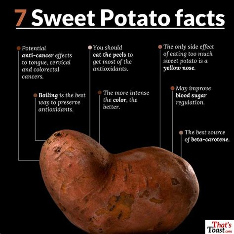 carbohydrates 10 facts 17 best ideas about sweet potato nutrition facts on