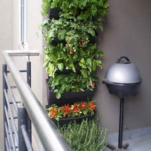 Permaculture On Pinterest Herbs Garden Indoor Herbs And Balcony Wall Garden