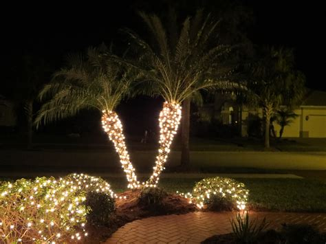 how to light up palm trees with christmas lights christmas light up palm tree mouthtoears com