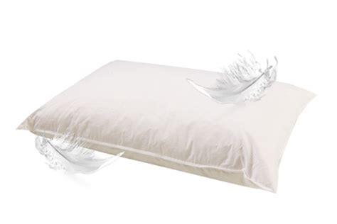 Feather Pillow by Dr House Cleaning How To Clean Feather Pillow