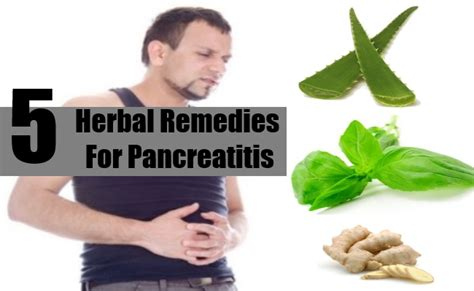 pancreatitis treatment at home pancreatitis herbal remedies treatments cure diy martini