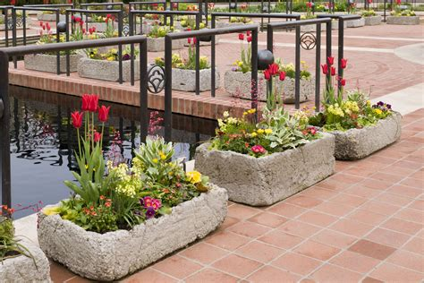 trough garden containers creating hypertufa troughs at the garden my chicago