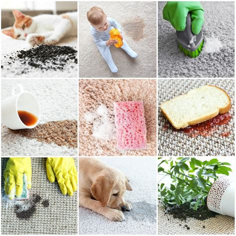 Upholstery Fabric Tulsa Carpet Protection 5 Reasons To Protect Your Carpet