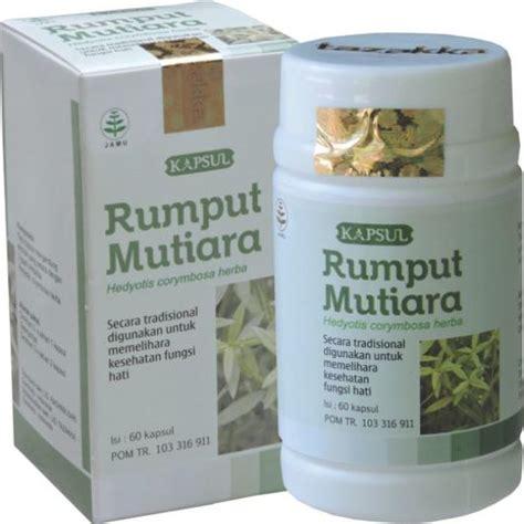 Obat Herbal Tumor Amandel pusat obat herbal di surabaya jual hajar jahanam