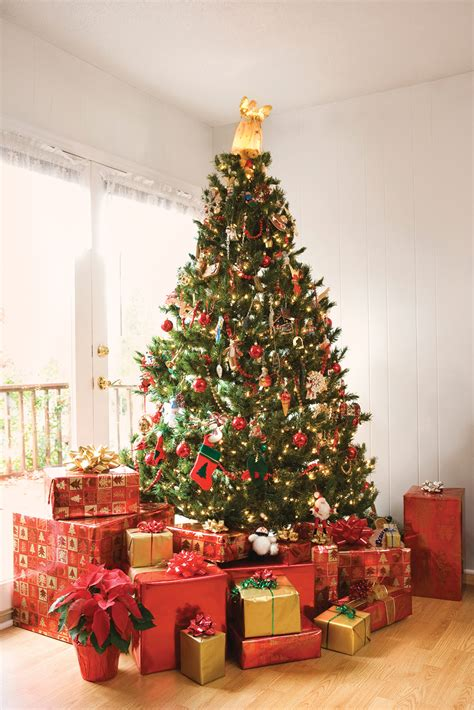 menards home improvement xmas trees local experts offer advice on tree safety