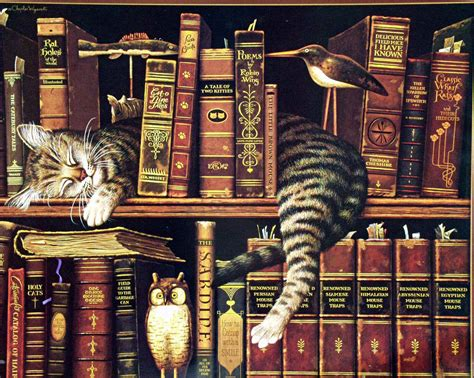 wallpaper cat book reading cats computer wallpaper wallpapersafari