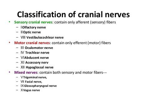 sensory motor and mixed nerves cranial nerves