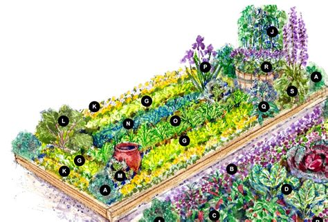 large colorful vegetable garden plan cottage garden living